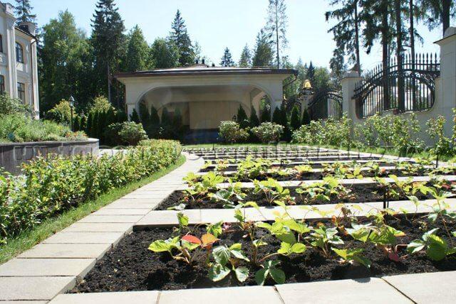 Огород огород необычной планировки