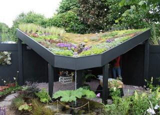 Садовые идеи для интерьера участка