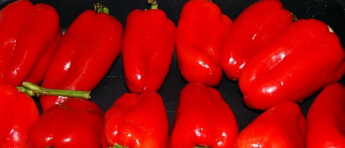 Семена болгарского перца