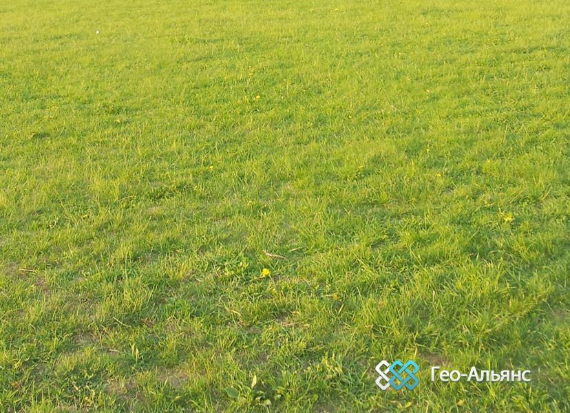 Экопарковка: какую газонную решетку выбрать для строительства парковки на даче