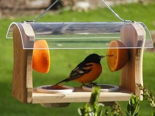 как сделать кормушку для птиц своими руками фото