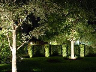 Подсветка и освещение деревьев